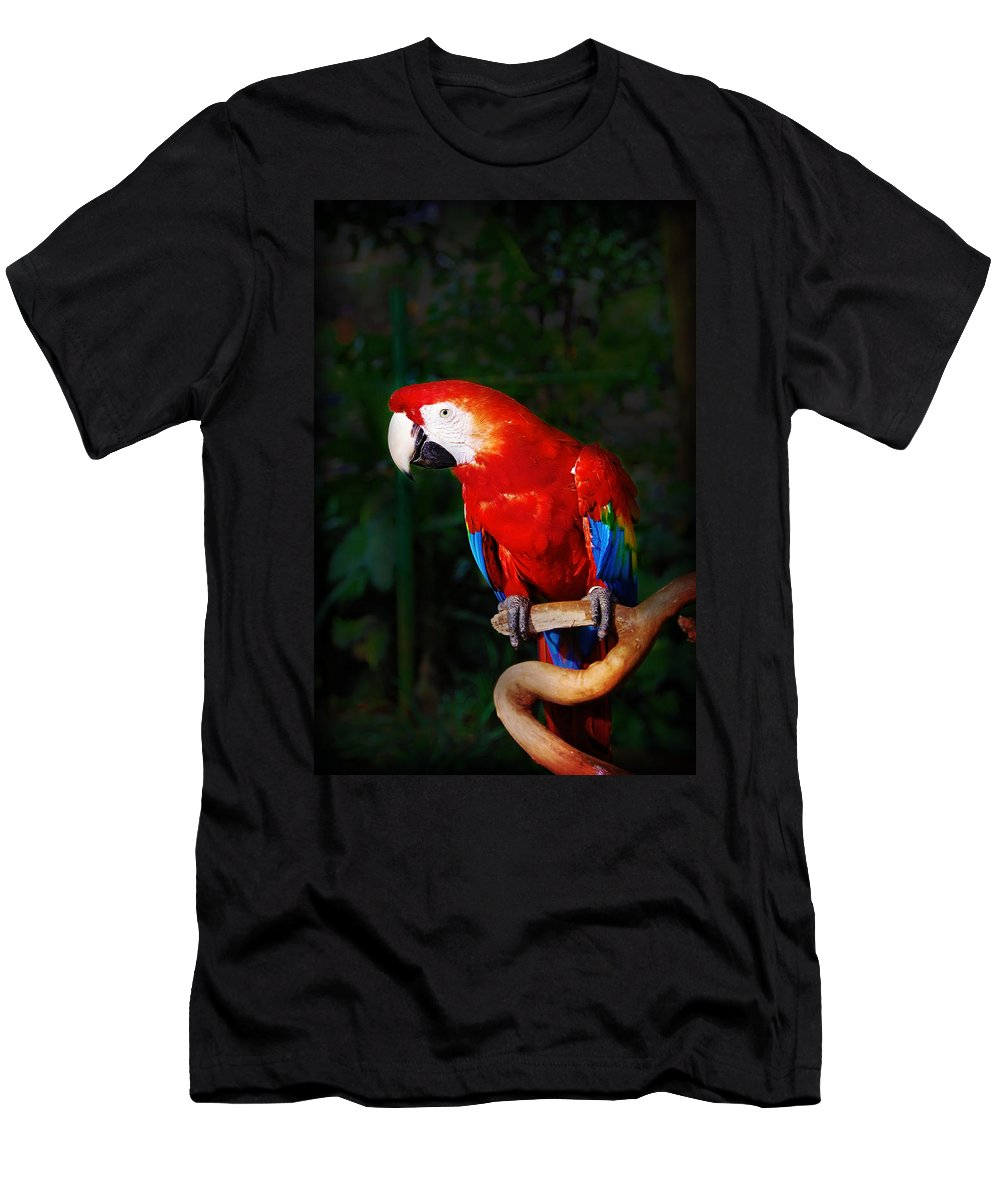 Bird Men's T-Shirt (Athletic Fit) featuring the photograph Birdie by Charuhas Images