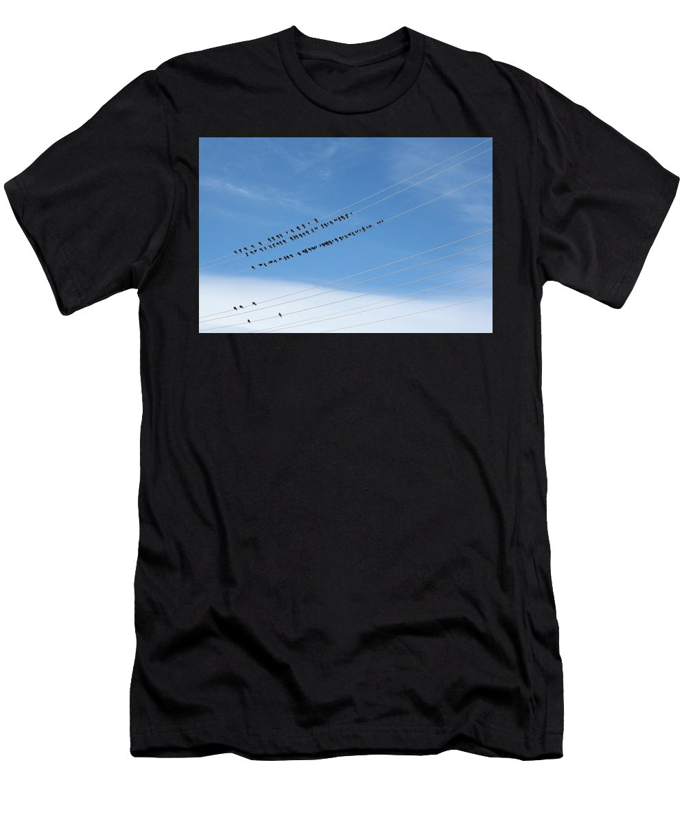 Birds Men's T-Shirt (Athletic Fit) featuring the photograph Birds On Wires by Ric Bascobert
