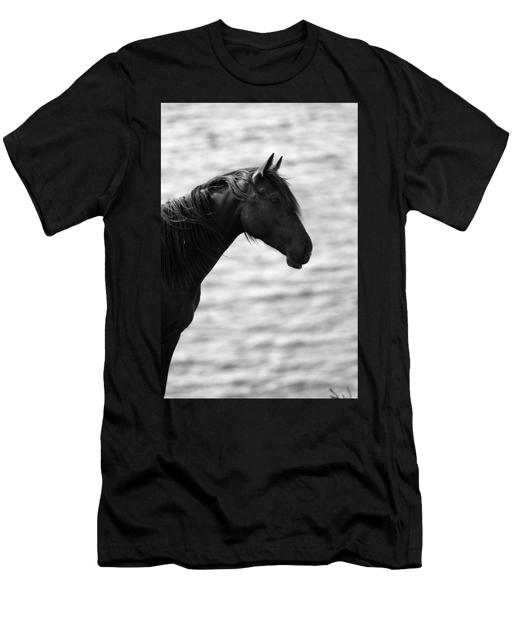 Stallion Men's T-Shirt (Athletic Fit) featuring the photograph Black Beauty by Aidan Moran