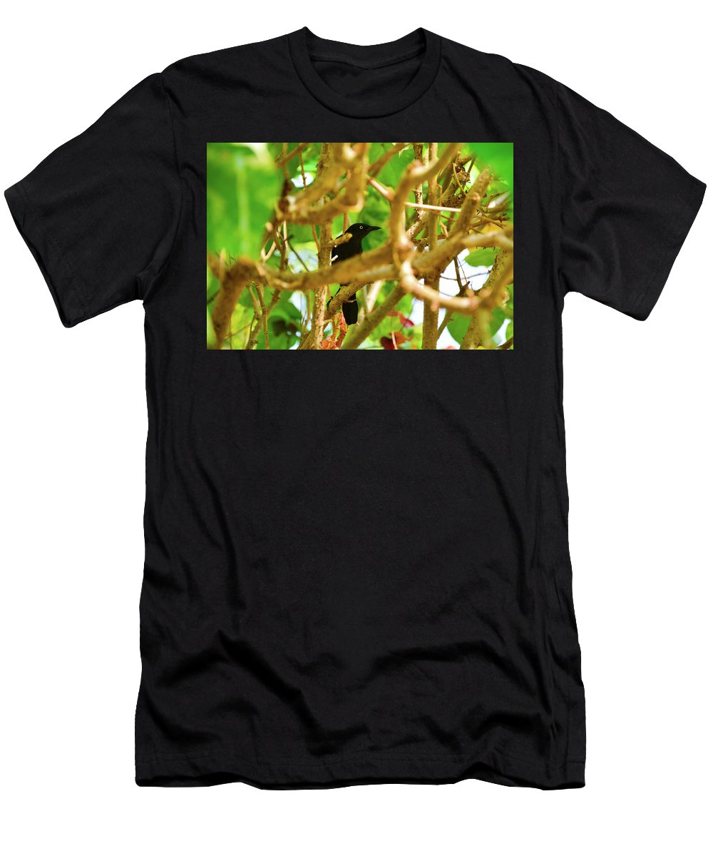Bird Men's T-Shirt (Athletic Fit) featuring the photograph Black Bird by Mint Decor