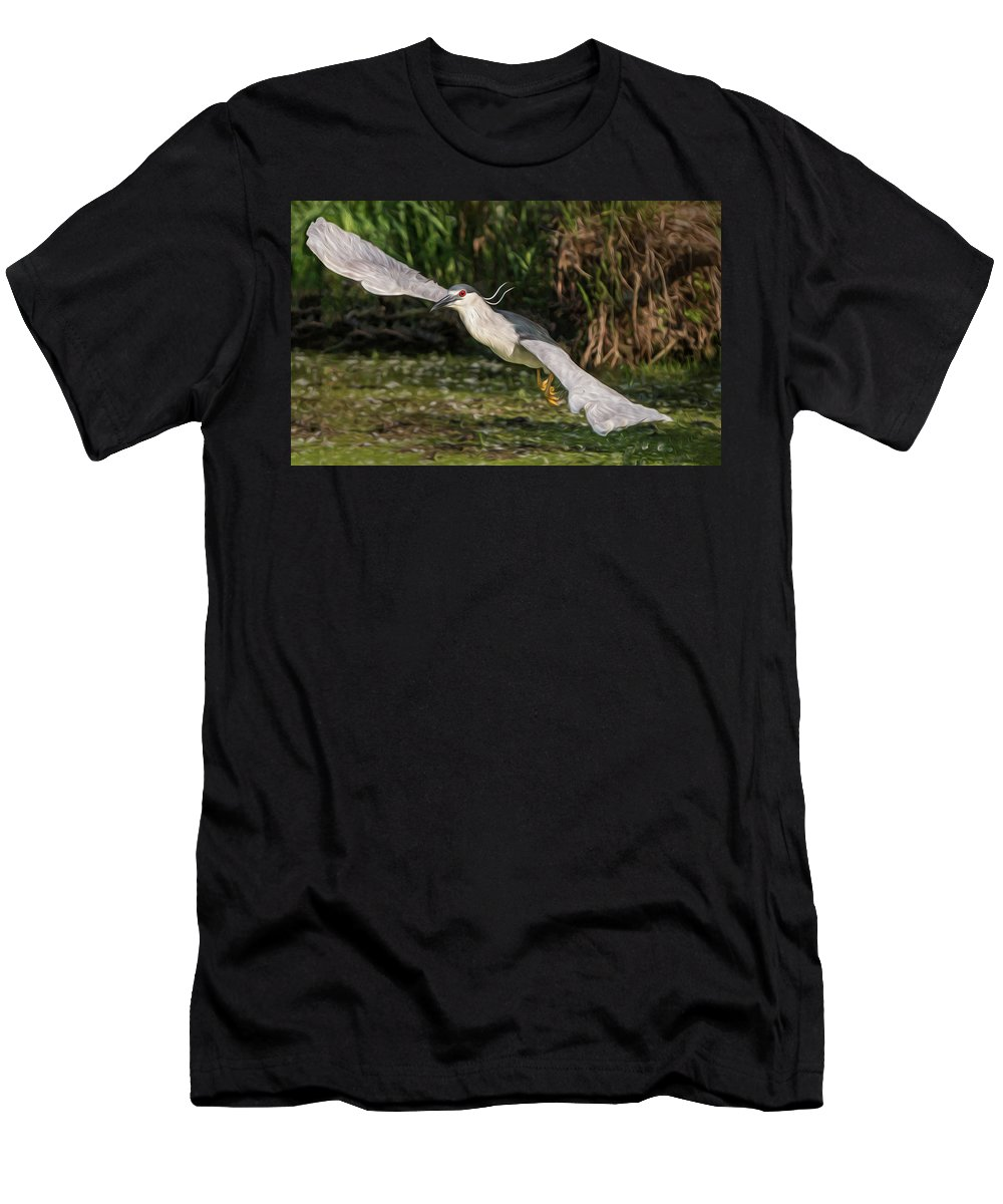 Bird Men's T-Shirt (Athletic Fit) featuring the photograph Black-crowned Night Heron In Flight by Patti Deters