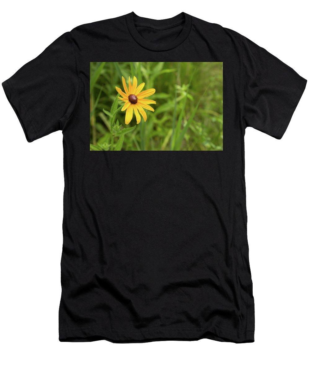 Rudbeckia Hirta Men's T-Shirt (Athletic Fit) featuring the photograph Black Eyed Susan Vi by Lori Lynn Sadelack