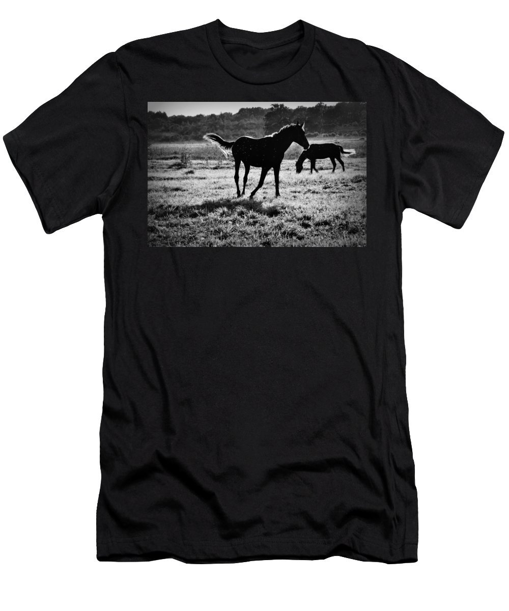 Animal Men's T-Shirt (Athletic Fit) featuring the photograph Black Horse. by  larisa Fedotova