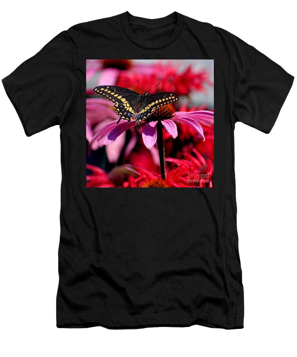 Insect Men's T-Shirt (Athletic Fit) featuring the photograph Black Swallowtail Butterfly On Coneflower Square by Karen Adams