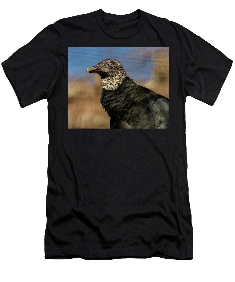 Black Vulture Men's T-Shirt (Athletic Fit) featuring the photograph Black Vulture 1 by David Pine