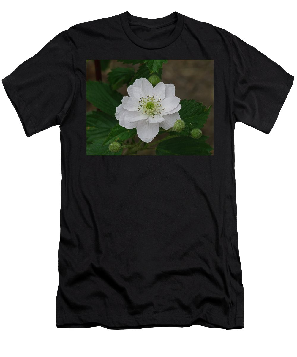 Flower Men's T-Shirt (Athletic Fit) featuring the photograph Blackberry Blossom by Greg Boutz