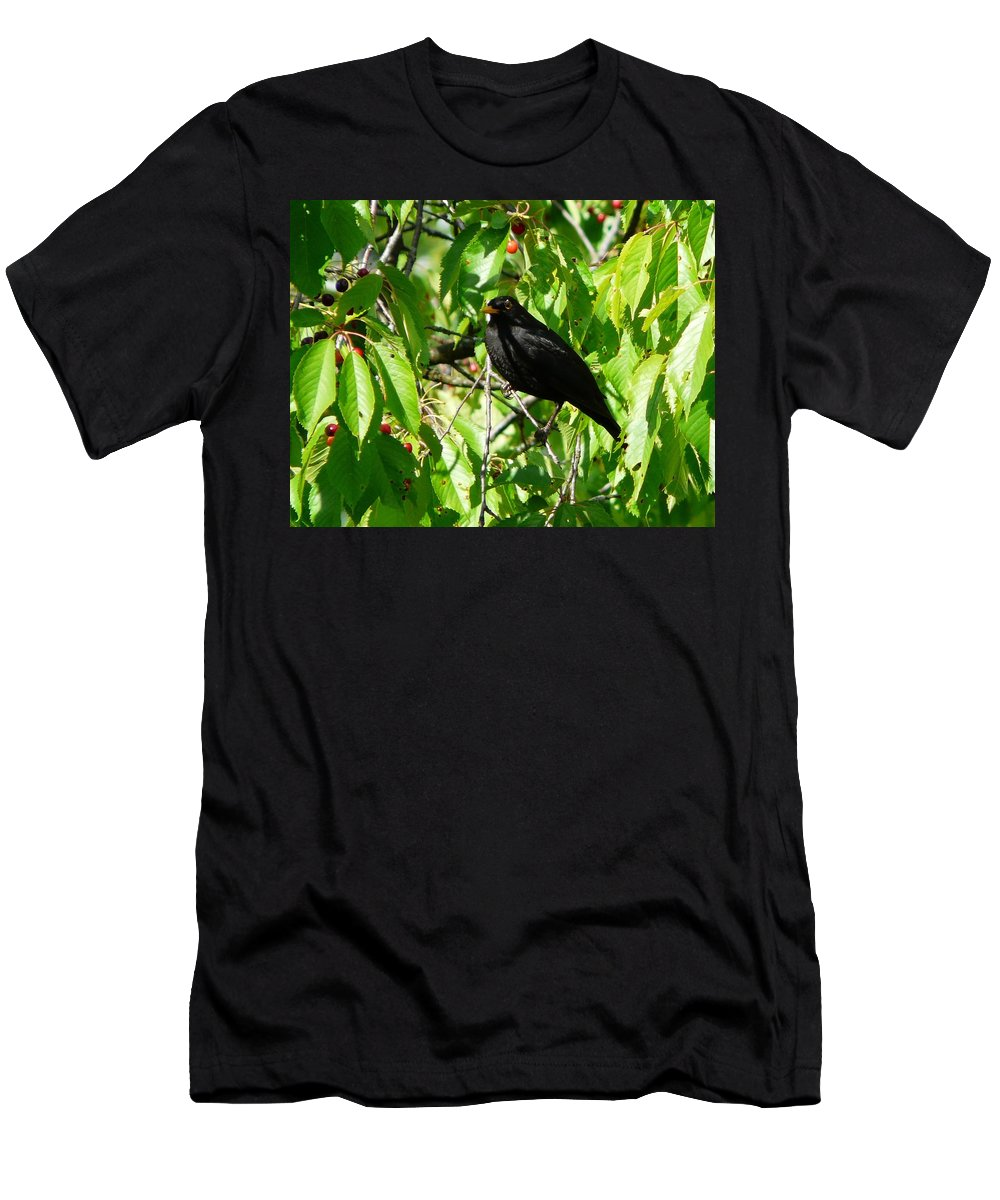 Bird Men's T-Shirt (Athletic Fit) featuring the photograph Blackbird In The Cherry Tree by Valerie Ornstein