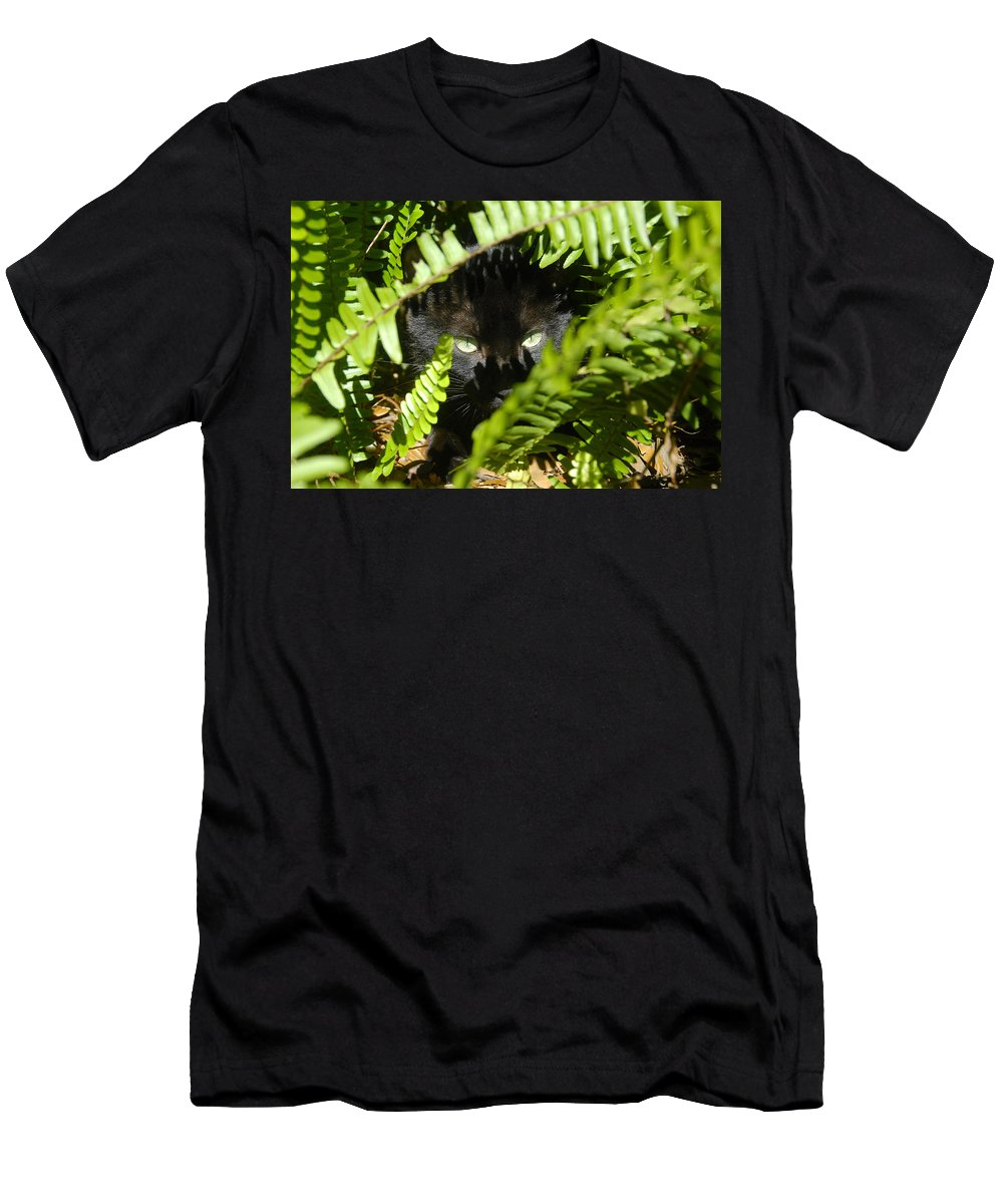 Cat Men's T-Shirt (Athletic Fit) featuring the photograph Blackie In The Ferns by David Lee Thompson