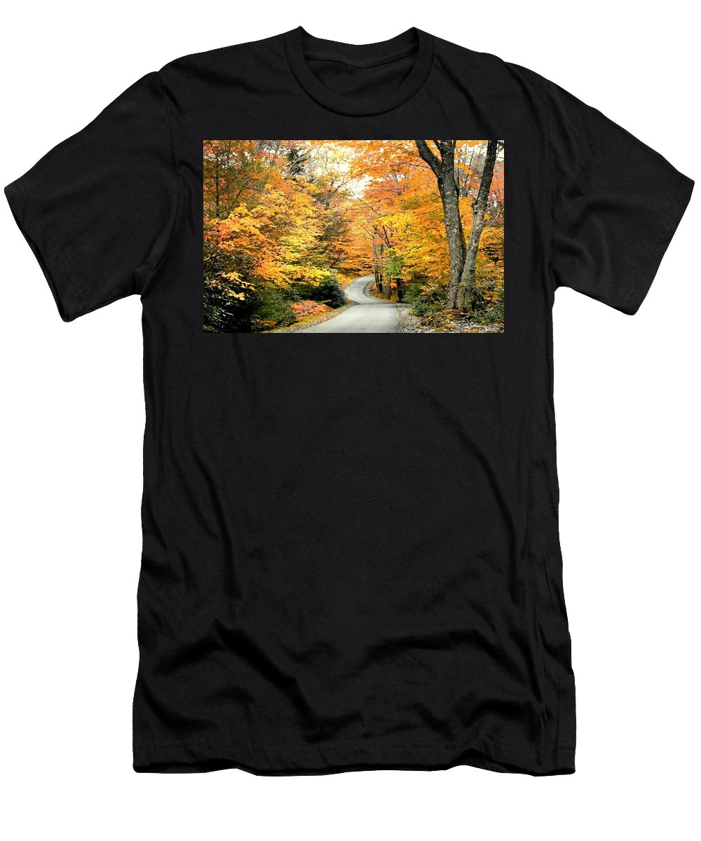 Autumn Men's T-Shirt (Athletic Fit) featuring the photograph Blackwater Falls Autumn Road by Michael Forte