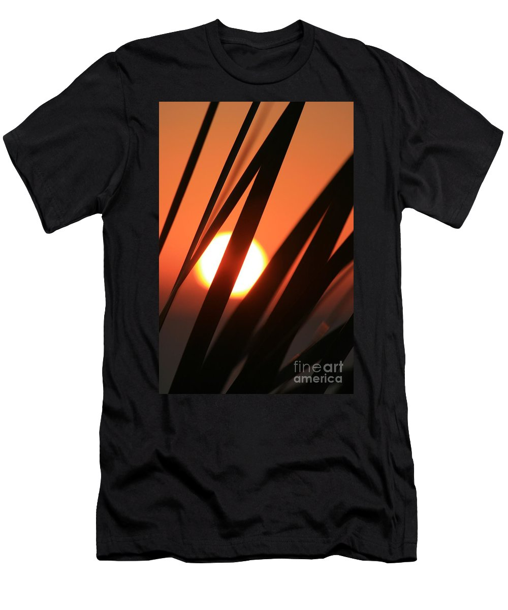 Sun Men's T-Shirt (Athletic Fit) featuring the photograph Blazing Sunset And Grasses by Nadine Rippelmeyer