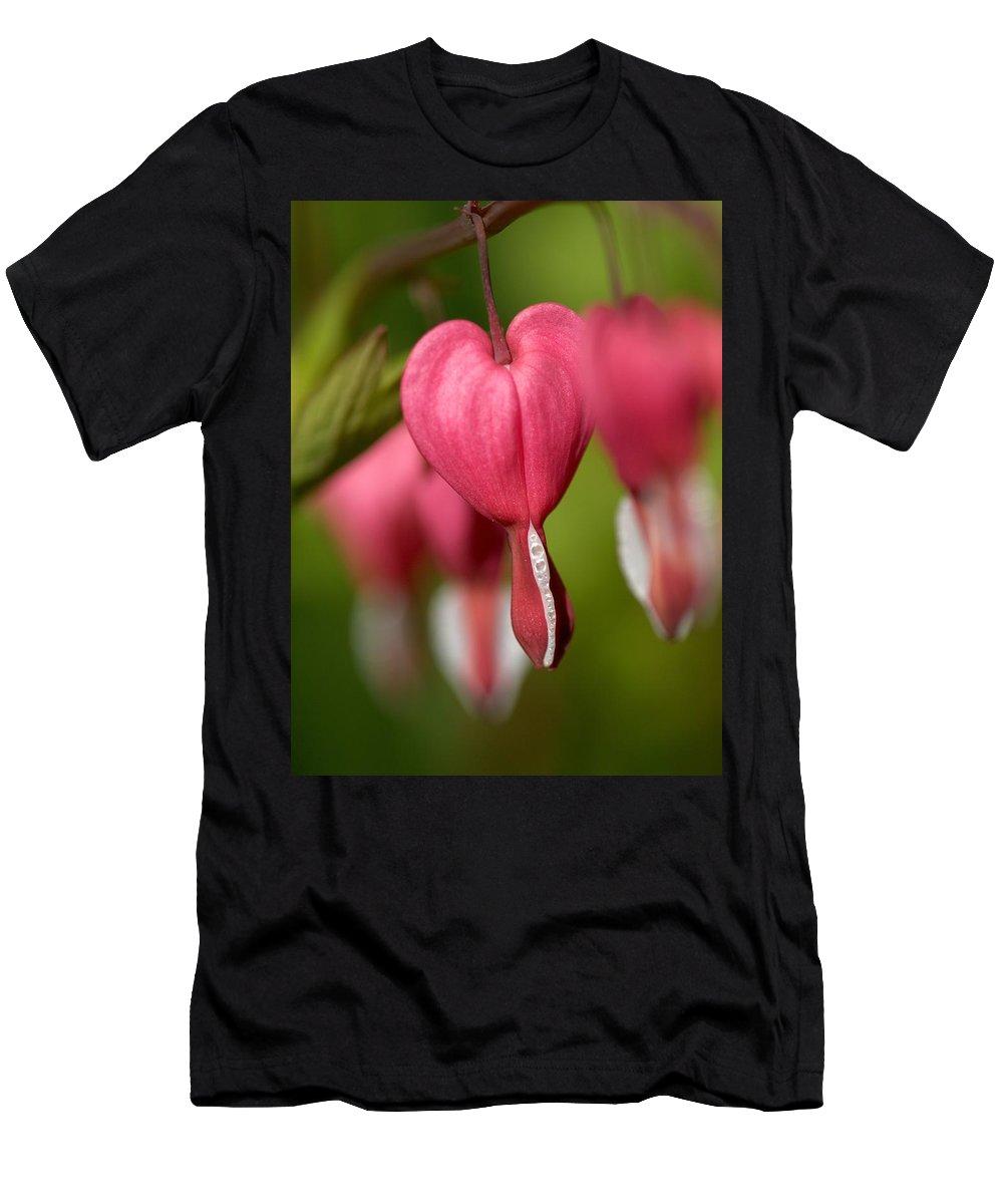 Lehtokukka Men's T-Shirt (Athletic Fit) featuring the photograph Bleeding Heart by Jouko Lehto