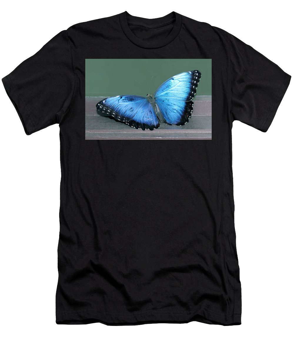 Butterfly Men's T-Shirt (Athletic Fit) featuring the photograph Blue Butterfly by Judy Latimer