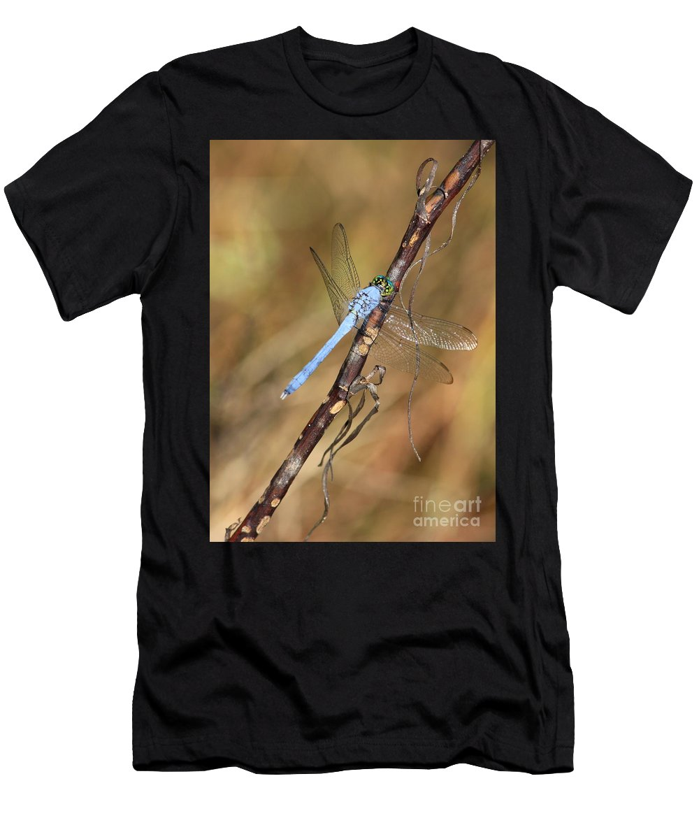 Dragonflies Men's T-Shirt (Athletic Fit) featuring the photograph Blue Dragonfly Portrait by Carol Groenen
