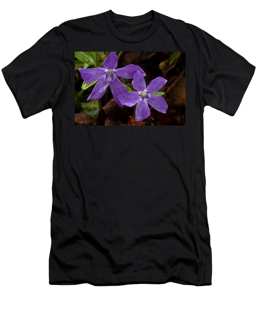 Wildflowers Men's T-Shirt (Athletic Fit) featuring the photograph Blue Violet Couple by Irwin Barrett