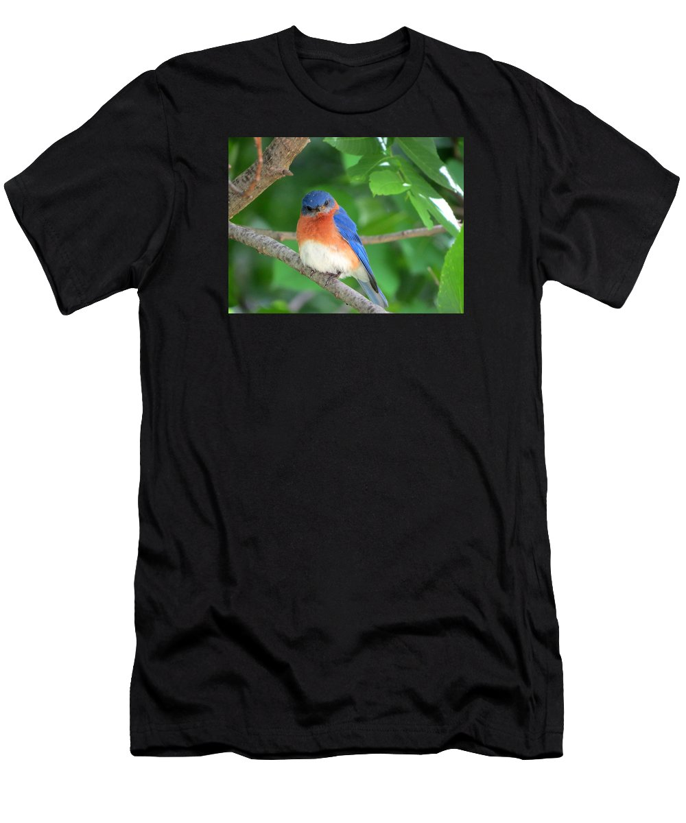 Bird Men's T-Shirt (Athletic Fit) featuring the photograph Bluebird by William Caine