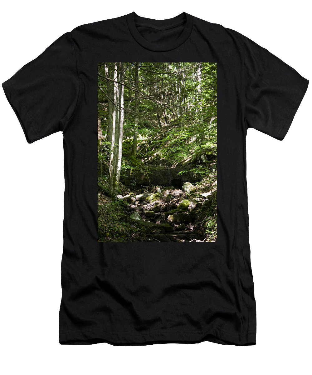Bluestone Men's T-Shirt (Athletic Fit) featuring the photograph Bluestone State Park Mountain Stream West Virginia by Teresa Mucha