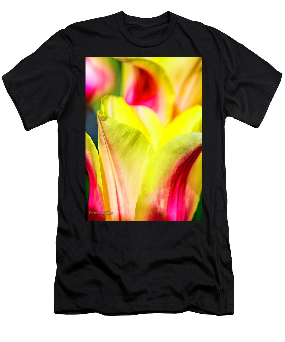 Blushing Men's T-Shirt (Athletic Fit) featuring the photograph Blushing Lady Tulips by LeeAnn McLaneGoetz McLaneGoetzStudioLLCcom