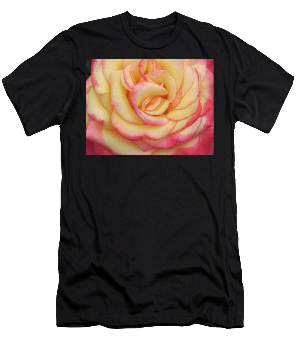 Close-up Photo Photography Flower Plant Blushing Yellow Rose Men's T-Shirt (Athletic Fit) featuring the photograph Blushing Yellow Rose by Christina Geiger