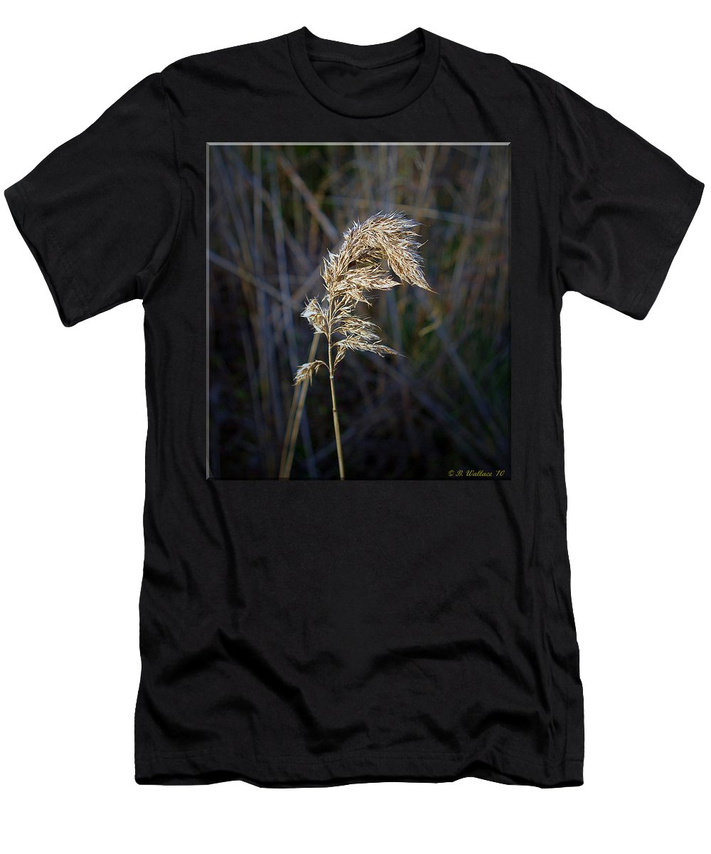 2d Men's T-Shirt (Athletic Fit) featuring the photograph Born Wild by Brian Wallace