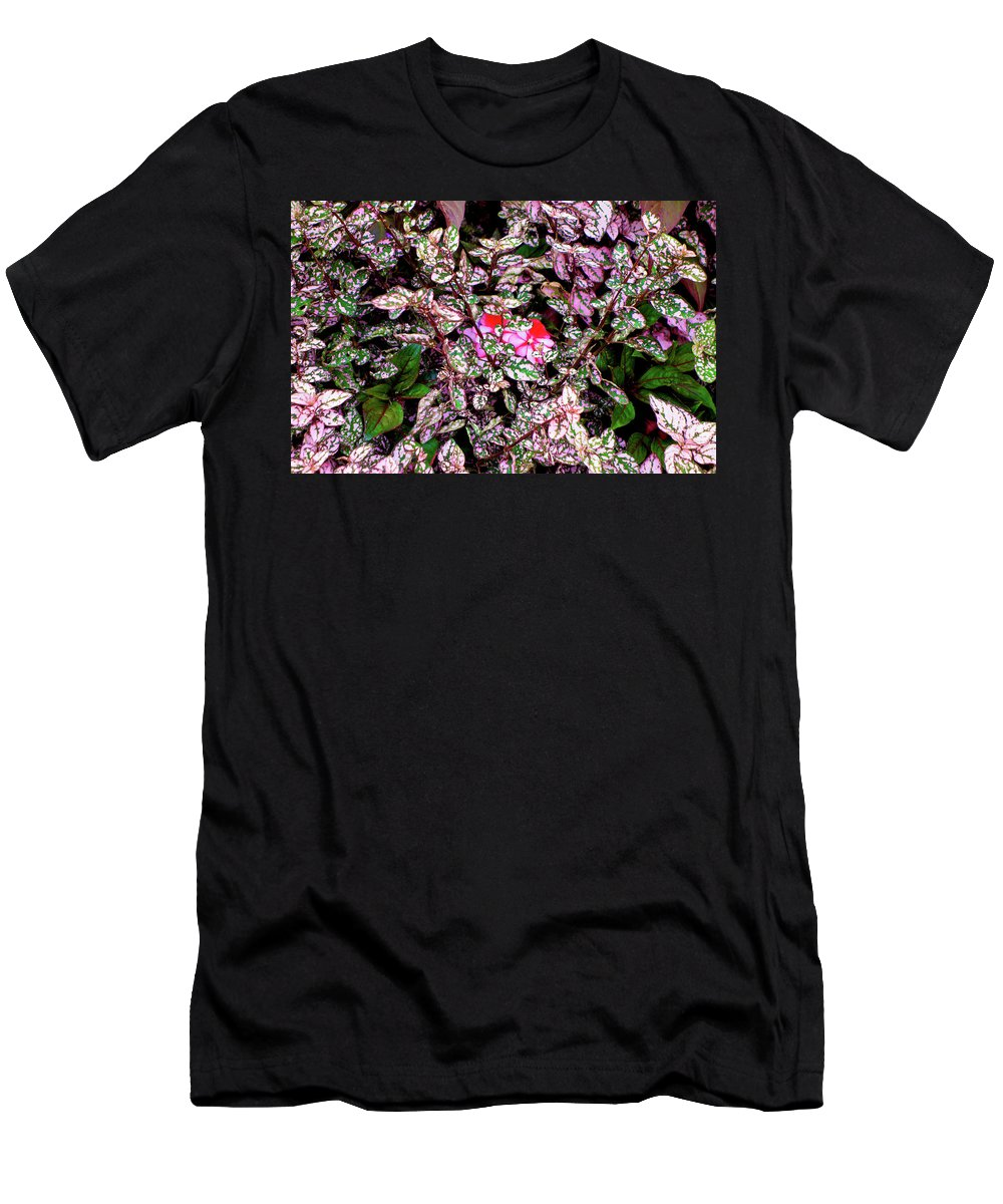 Boston Men's T-Shirt (Athletic Fit) featuring the photograph Boston Common Study 12 by Robert Meyers-Lussier
