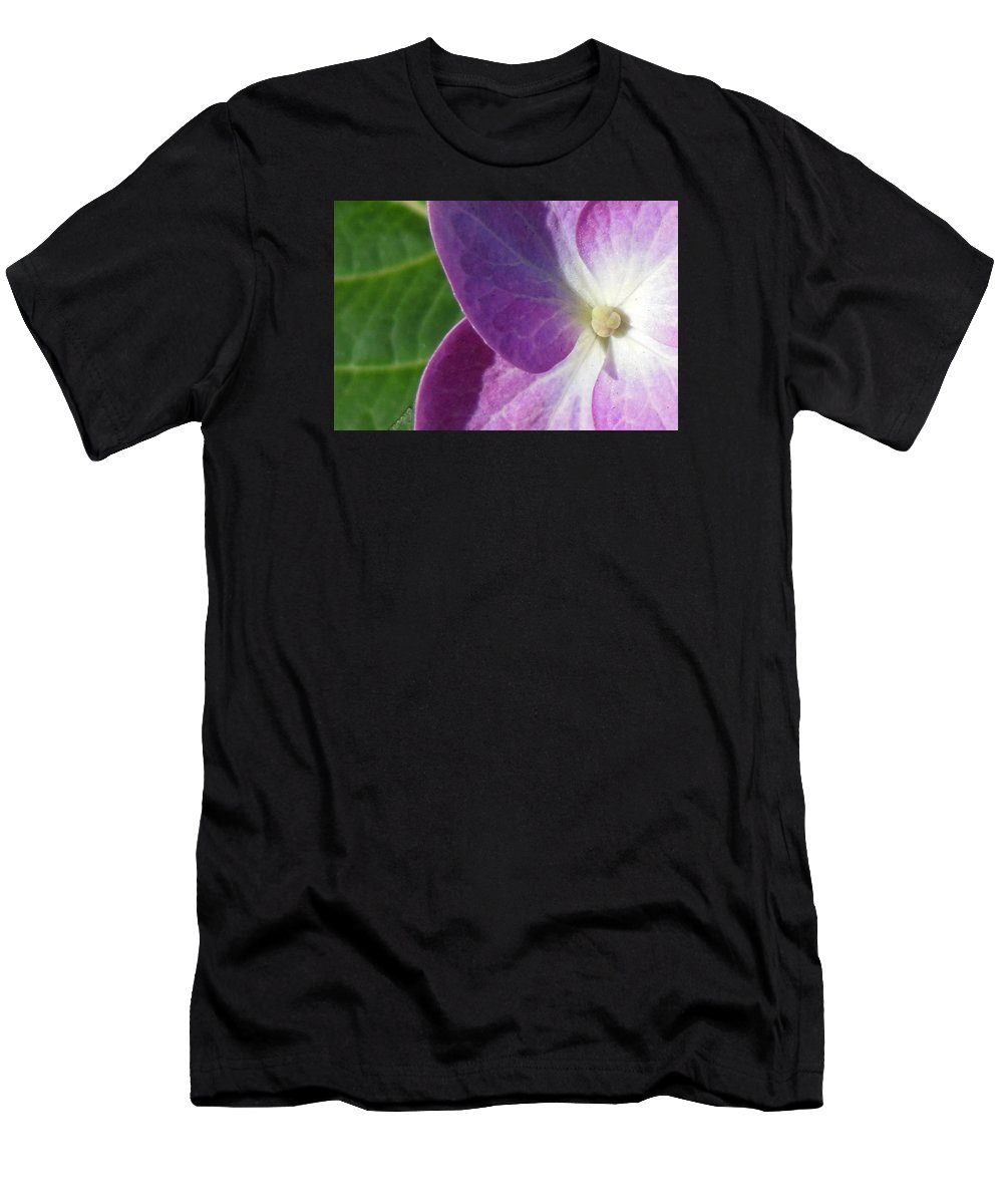 Hydrangea Men's T-Shirt (Athletic Fit) featuring the photograph Boston Hydrangea by Anita Roche'