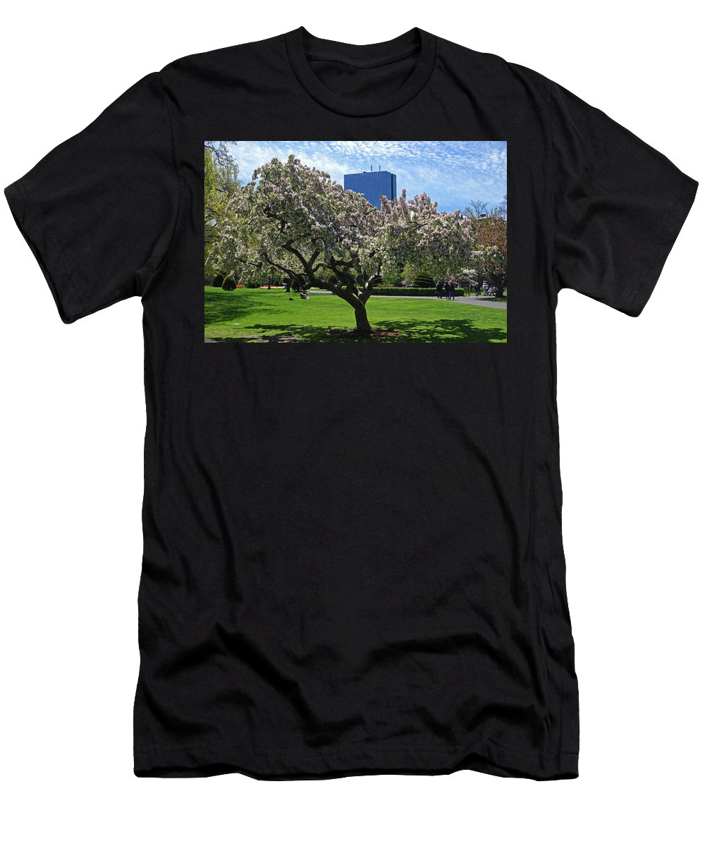 Boston Men's T-Shirt (Athletic Fit) featuring the photograph Boston Public Garden Spring Tree Boston Ma by Toby McGuire
