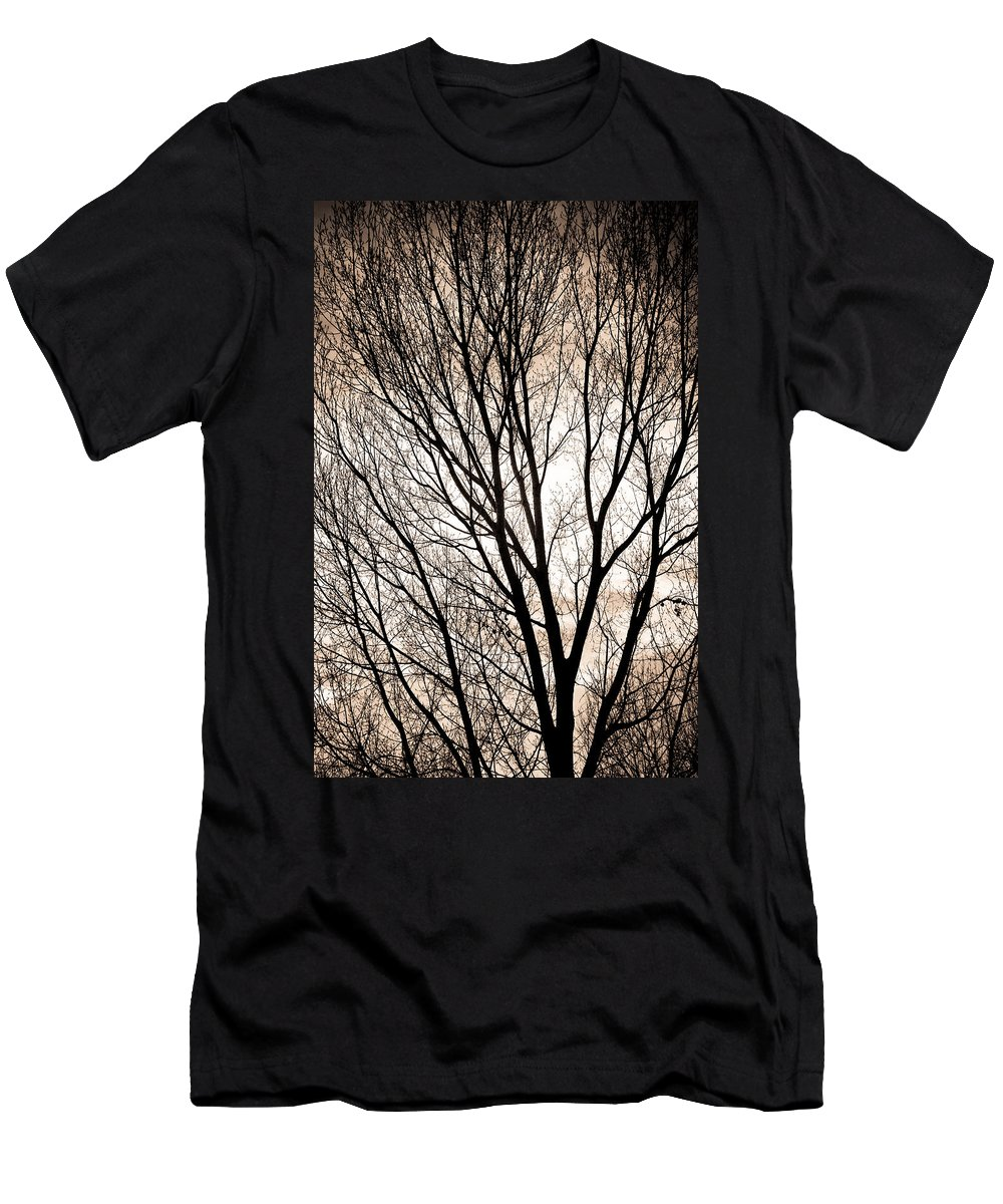 Longmont Men's T-Shirt (Athletic Fit) featuring the photograph Branches Silhouettes Mono Tone by James BO Insogna