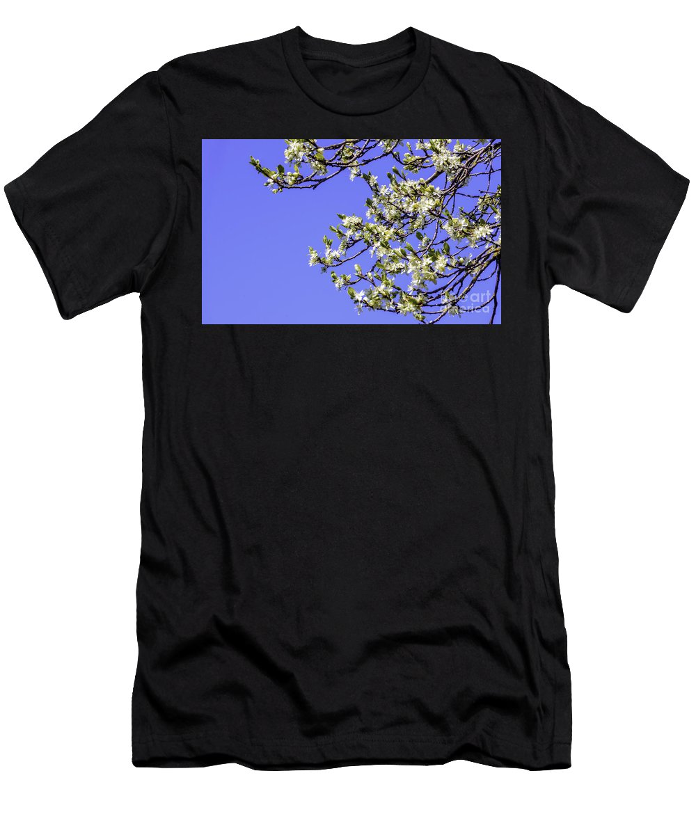 Blossom Men's T-Shirt (Athletic Fit) featuring the photograph Bright Spring Blossom 1 by Griff Griffiths