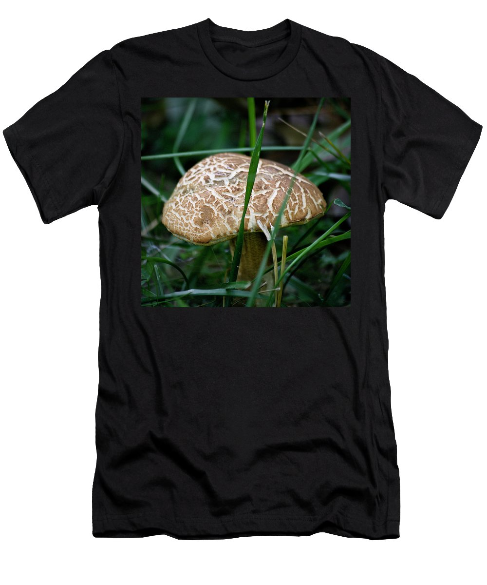 Fungus Men's T-Shirt (Athletic Fit) featuring the photograph Brown Mushroom Squared by Teresa Mucha