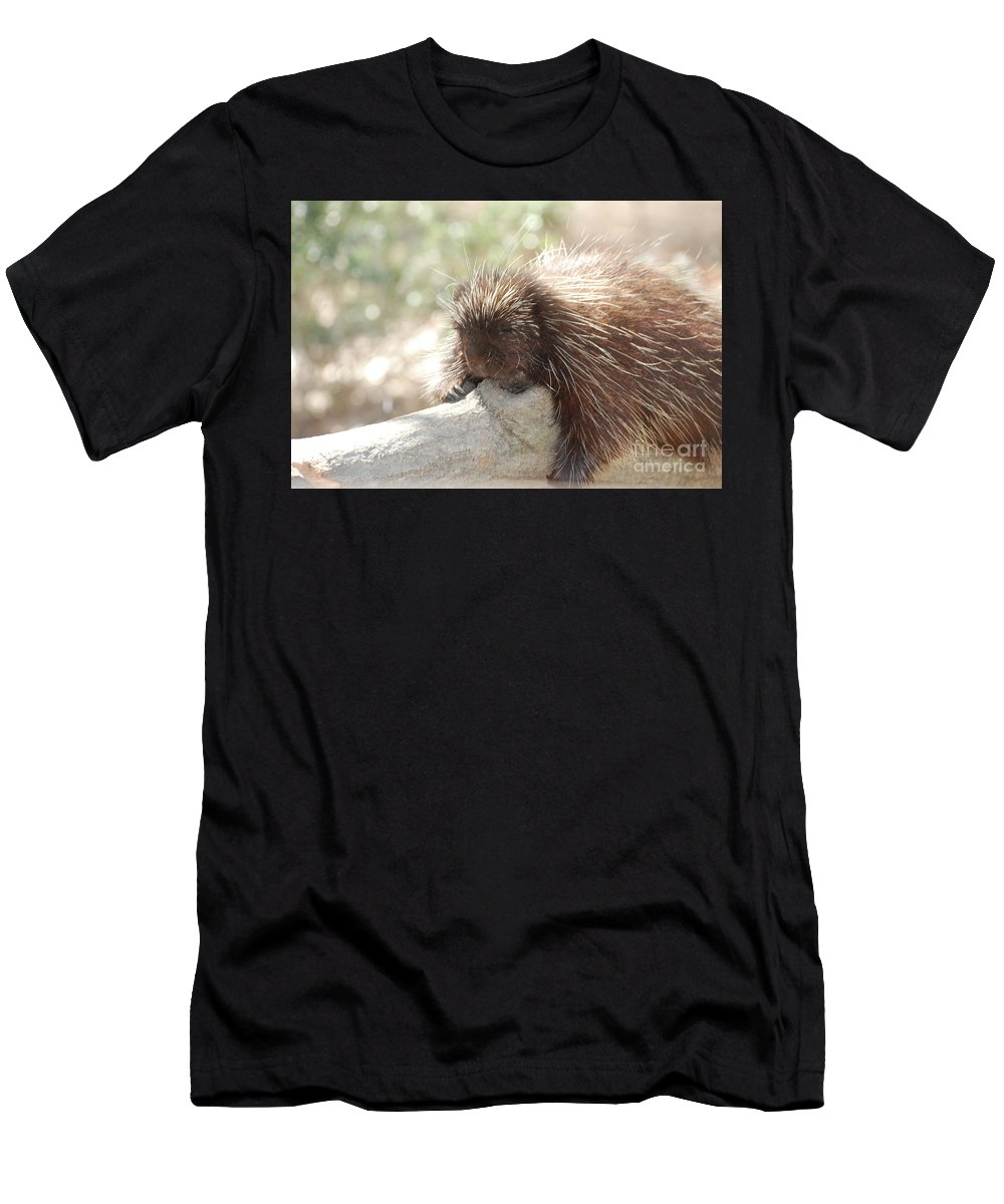 Porcupine Men's T-Shirt (Athletic Fit) featuring the photograph Brown Porcupine On A Fallen Log by DejaVu Designs