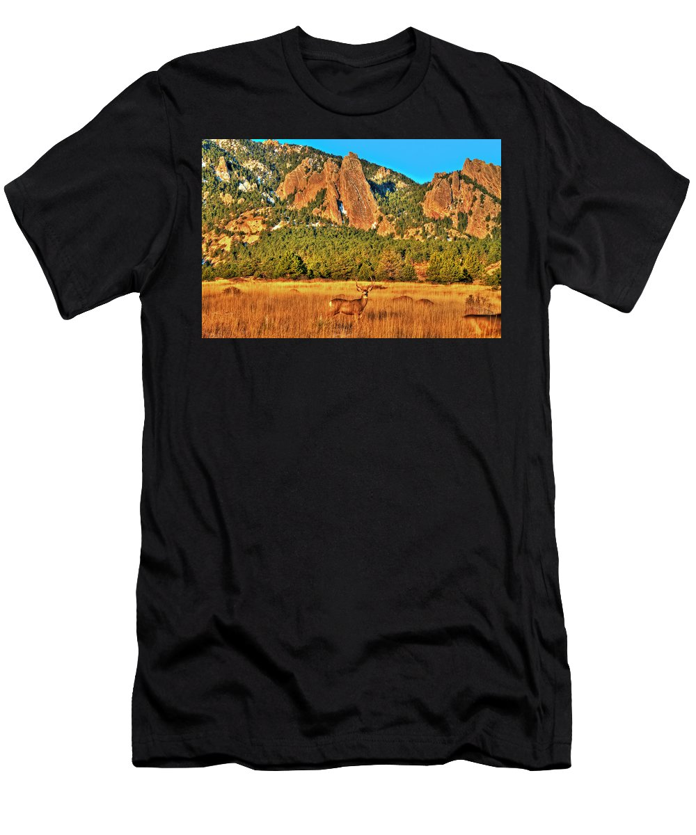Deer Men's T-Shirt (Athletic Fit) featuring the photograph Buck And Flatirons by Scott Mahon