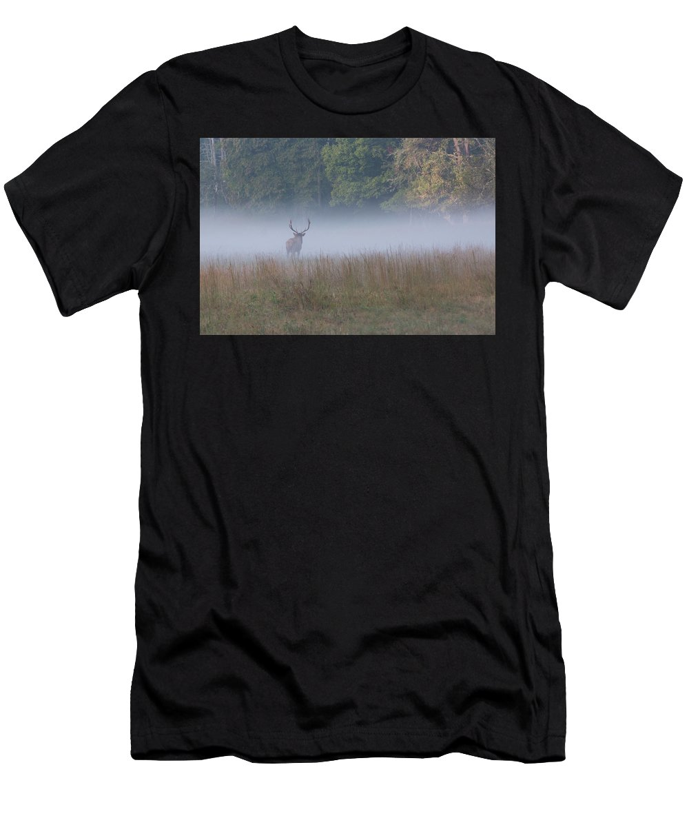 Elk Men's T-Shirt (Athletic Fit) featuring the photograph Bull Elk Disappearing In Fog - September 30 2016 by D K Wall