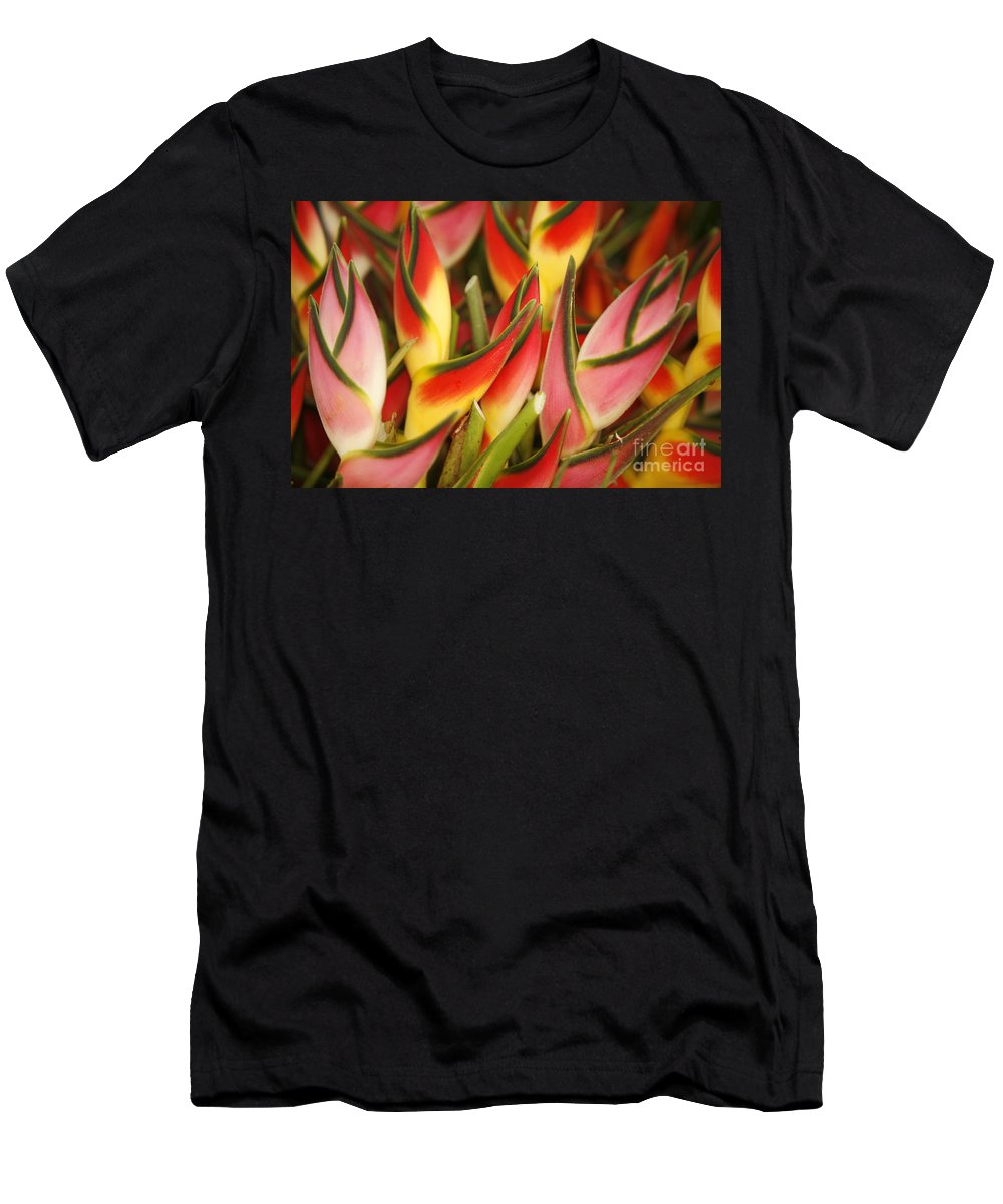 Beautiful Men's T-Shirt (Athletic Fit) featuring the photograph Bunch Of Heliconia by Ron Dahlquist - Printscapes
