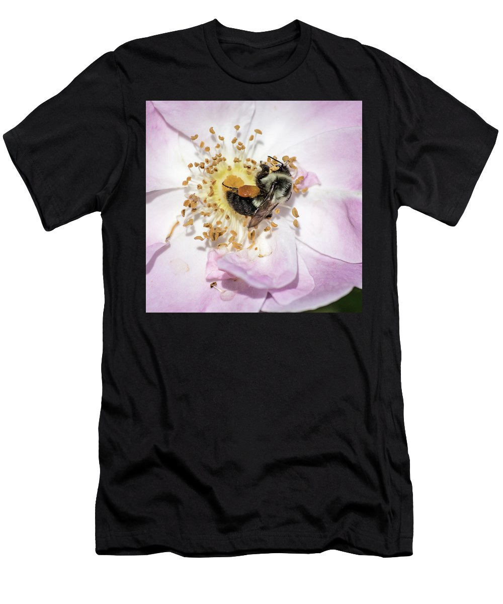 Bee Men's T-Shirt (Athletic Fit) featuring the photograph Busy Bee by George Fredericks