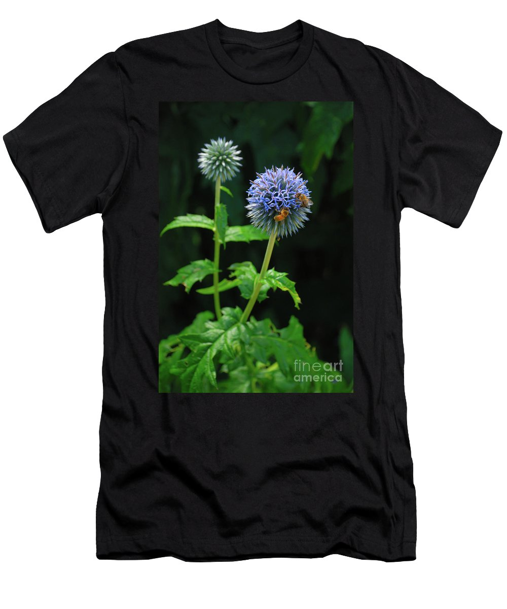 Mottisfont Men's T-Shirt (Athletic Fit) featuring the photograph Busy Bees by Richard Gibb
