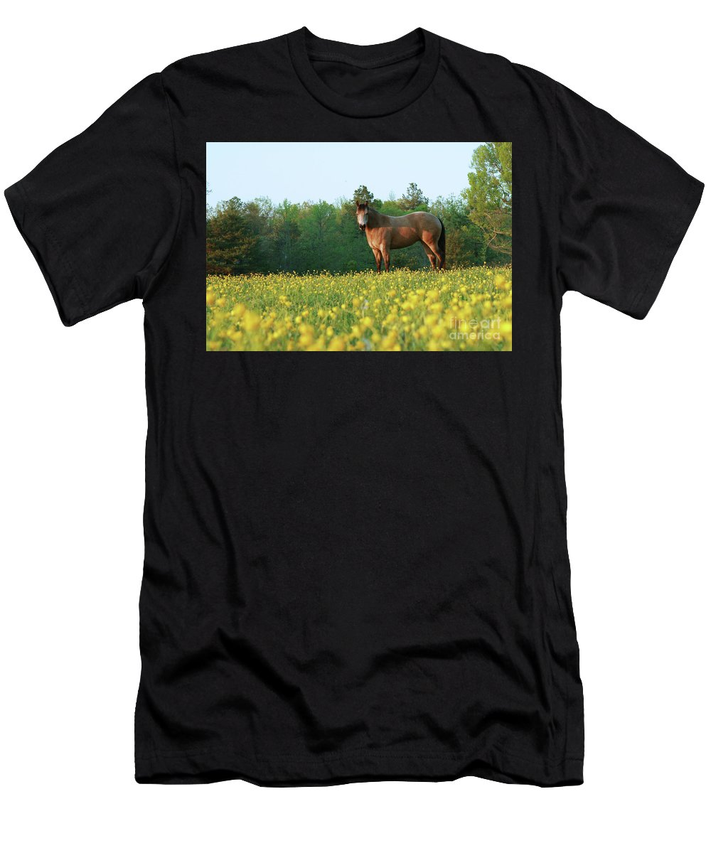Equine Men's T-Shirt (Athletic Fit) featuring the photograph Buttercup by Laura Russell
