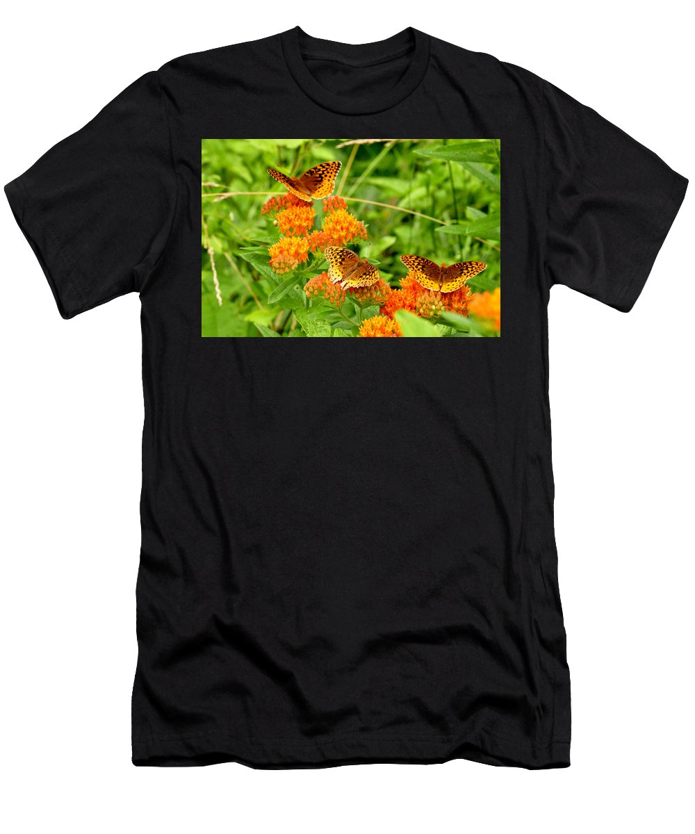 Butterflies Men's T-Shirt (Athletic Fit) featuring the photograph Butterflies by David Kelso