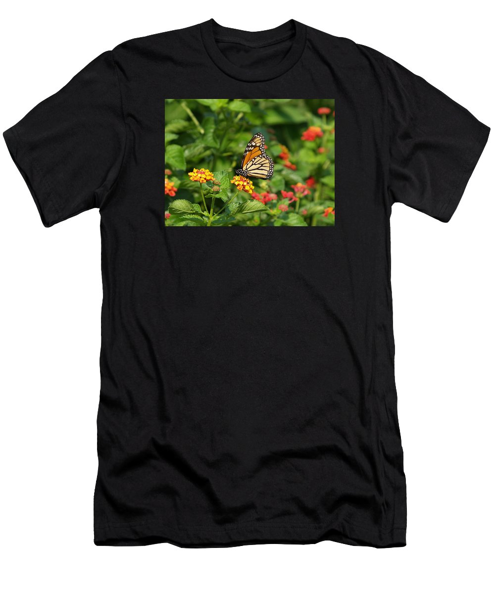 Ann Keisling Men's T-Shirt (Athletic Fit) featuring the photograph Butterfly Garden by Ann Keisling