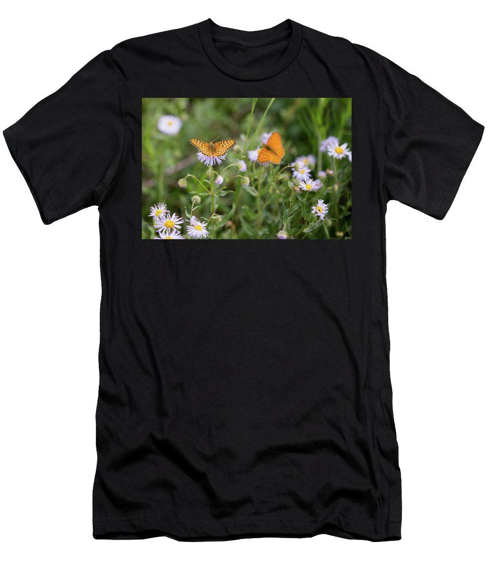 Crested Butte Men's T-Shirt (Athletic Fit) featuring the photograph Butterfly On Fleabane #2 by Meagan Watson