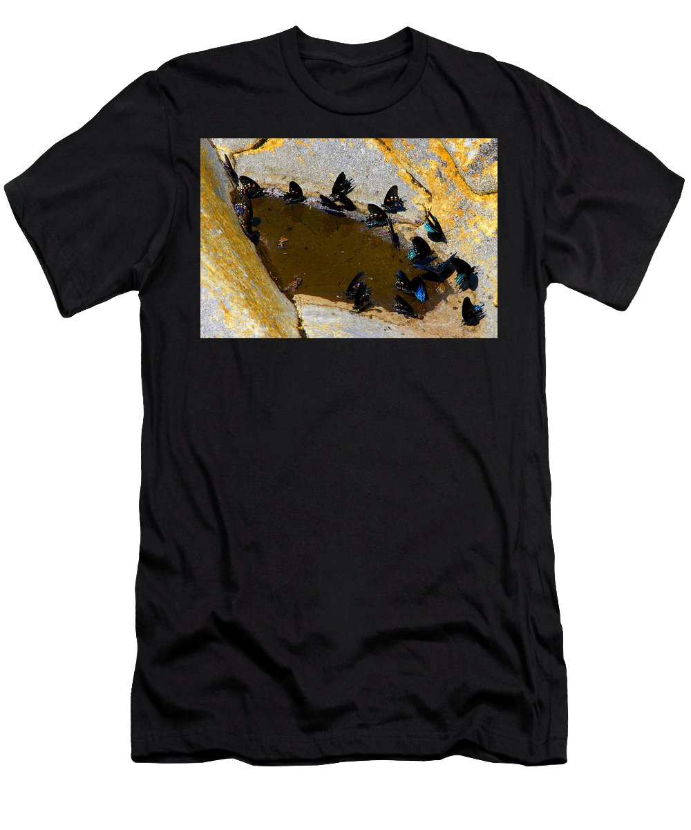 Butterflies Men's T-Shirt (Athletic Fit) featuring the photograph Butterfly Pool by David Lee Thompson
