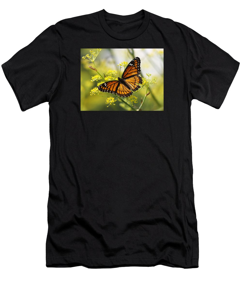 Ann Keisling Men's T-Shirt (Athletic Fit) featuring the photograph Butterfly Wings by Ann Keisling