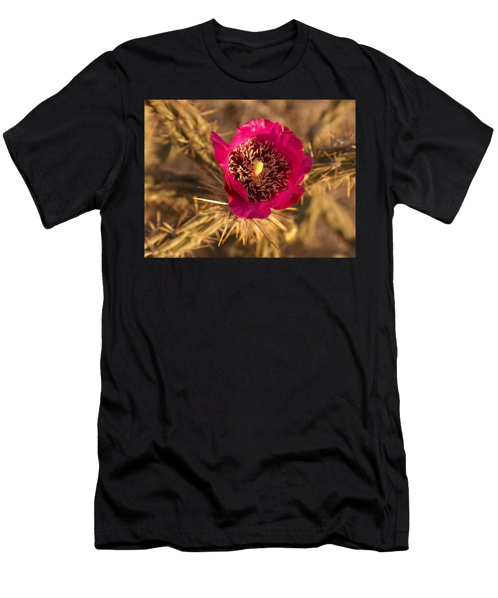 Cactus Flowers Wildflowers Men's T-Shirt (Athletic Fit) featuring the photograph Cactus Flower 1 by Tim McCarthy