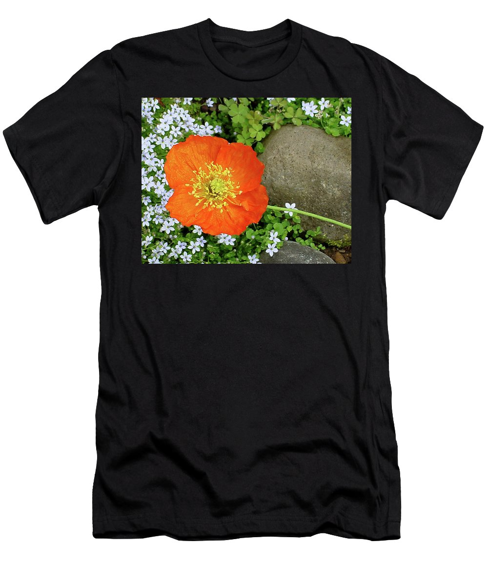 Star Men's T-Shirt (Athletic Fit) featuring the photograph California Poppy Rock Garden by Shirley Heyn