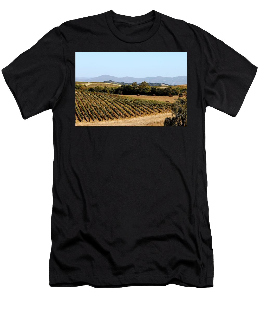 Vineyard Men's T-Shirt (Athletic Fit) featuring the photograph California Vineyards by Charlene Reinauer