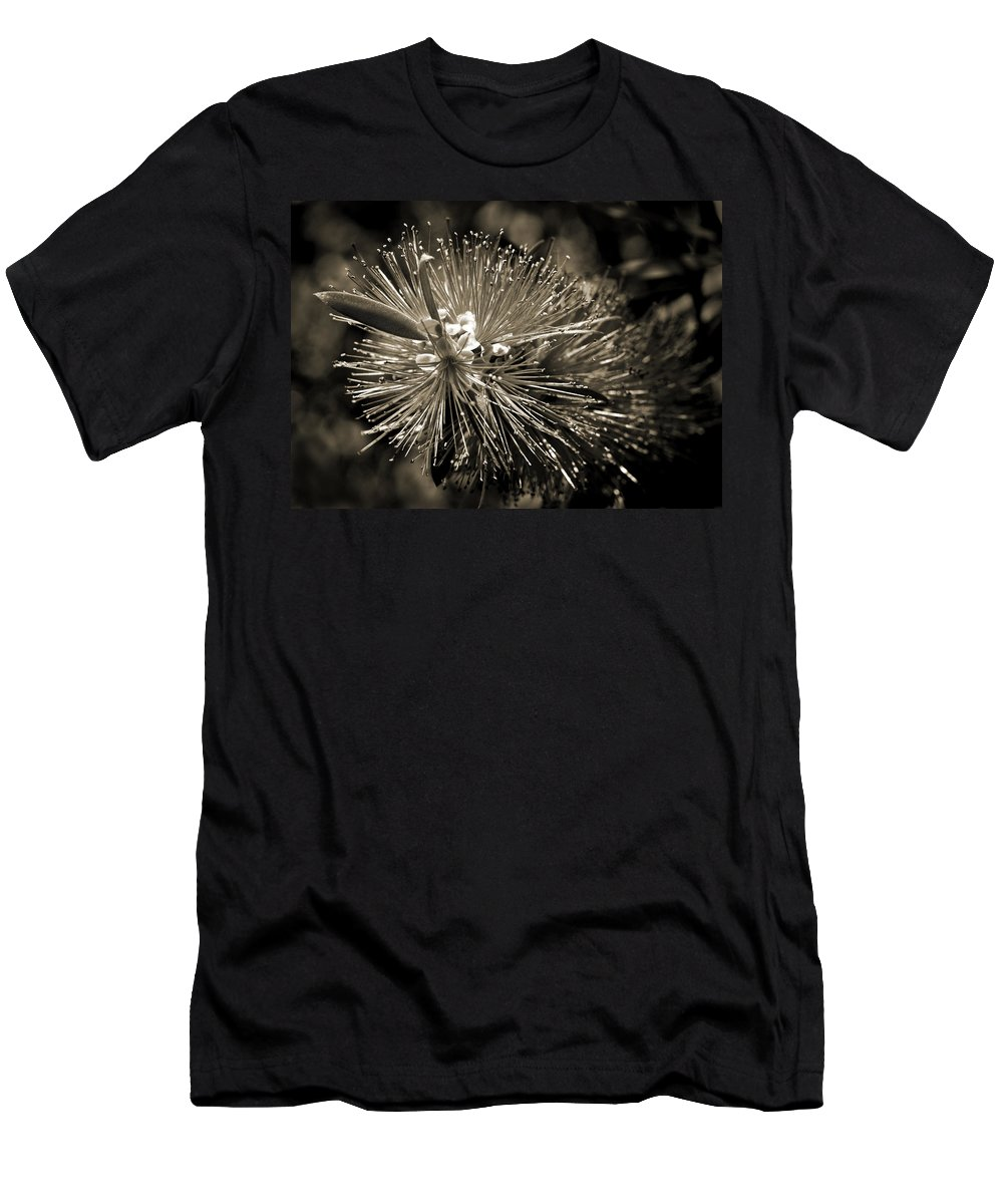 Callistemon Men's T-Shirt (Athletic Fit) featuring the photograph Callistemon II by Steven Sparks