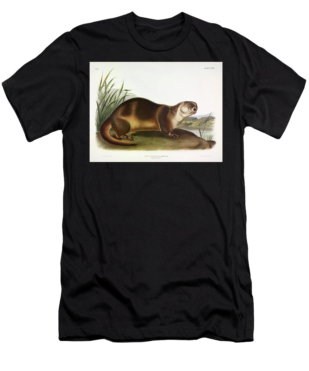 Northern River Otter T-Shirts