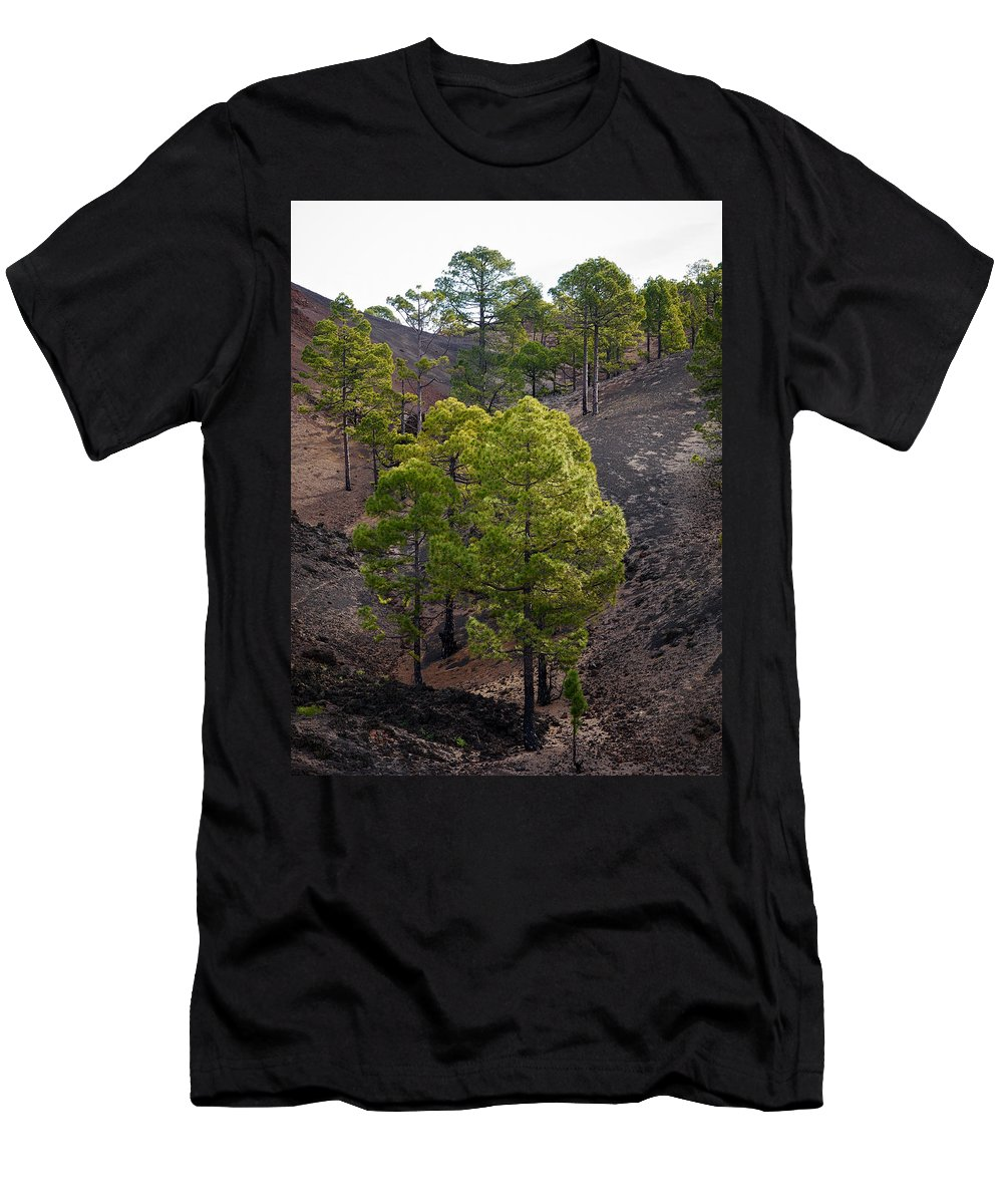 Landscape Men's T-Shirt (Athletic Fit) featuring the photograph Canary Pines Nr 4 by Jouko Lehto