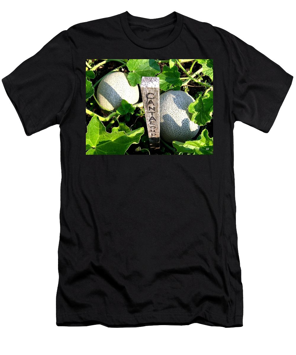 Cantaloupe Men's T-Shirt (Athletic Fit) featuring the photograph Cantaloupe by Will Borden