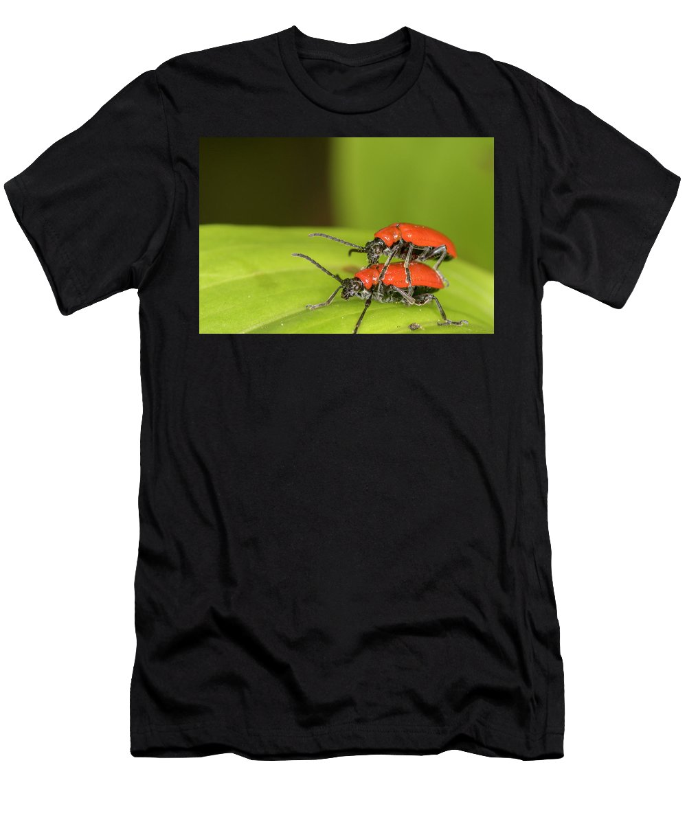 Cardinal Beetle Men's T-Shirt (Athletic Fit) featuring the photograph Cardinal Beetle by Chris Smith