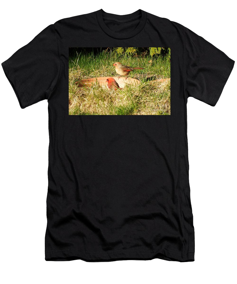 Nature Men's T-Shirt (Athletic Fit) featuring the photograph Cardinals by Vicky Tarcau